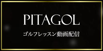 ピタゴルの画像